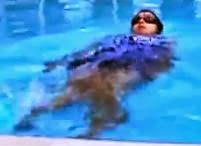 pływanie w ciąży