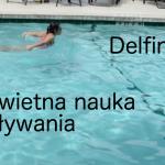 Pływanie delfin (styl motylkowy) – świetna nauka pływania