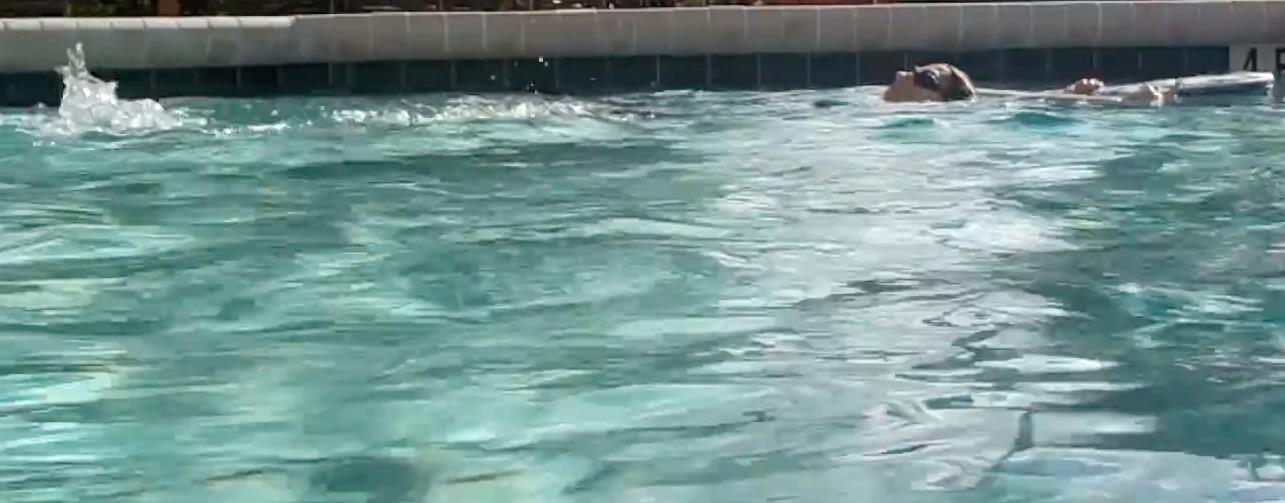 styl grzbietowy pływanie z deską
